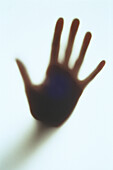 Color, Colour, Concept, Concepts, Contemporary, Finger, Fingers, Gesture, Gestures, Gesturing, Hand, Hands, Human, One, One person, Open, Open hand, Open hands, People, Person, Persons, Shadow, Shadows, Silhouette, Silhouettes, Single person, Vertical, W