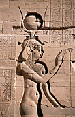 Detail of relief on temple. Philae. Aswan. Egypt