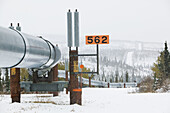 Trans-Alaska Pipeline View by Donnelly Dome. Winter (Mile 244 of Richardson Highway). Delta Junction. Interior. Alaska. USA.