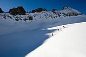 Three skiers freeriding, Gemsstock skiing region, Andermatt, Canton Uri, Switzerland