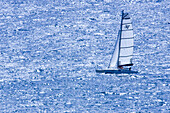 Blue, Catamaran, Catamarans, Color, Colour, Contemporary, Daytime, Exterior, Leisure, Ocean, Outdoor, Outdoors, Outside, Recreation, Sail, Sailing, Sails, Sea, Sport, Sports, Water, Water sports, Wind, C47-550825, agefotostock