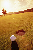 Ball, Balls, Blurred, Color, Colour, Concept, Concepts, Contemporary, Daytime, Detail, Details, Exterior, Fast, Golf, Golf course, Golf courses, Golfing, Grass, Green, Hole, Hole in one, Holes, Lawn, Motion, Movement, Outdoor, Outdoors, Outside, Putt, Pu