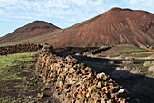 Volcanic landscape. Yaiza, Lanzarote. Canary Islands. Spain