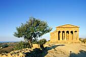 Italy, Sicily. Agrigento. Concord Temple.