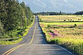 country road, Alaska