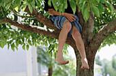 Hang, Hanging, Hidden, Hide, Hiding, Horizontal, Human, Infantile, Joy, Kid, Kids, Leg, Legs, Leisu