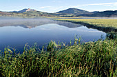 Lake, still w reflections and mountains and grass in Yellowstone, NP