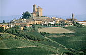 View of Serralunga d Alba. Piedmont. Italy