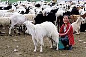 Girl milking a goat. Ovorkhangai province, Mongolia