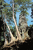 Architecture, Asia, Cambodia, Color, Colour, Daytime, Exterior, Outdoor, Outdoors, Outside, Ruins, Travel, Travels, Tree, Trees, World locations, World travel, F33-438879, agefotostock