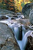 Stream. White Mountains. New Hampshire. USA