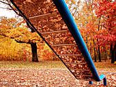 Autumn, Autumnal, Color, Colour, Daytime, Exterior, Fall, Foliage, Horizontal, Mirror image, Mirror images, Nature, Nobody, Outdoor, Outdoors, Outside, Park, Parks, Plant, Plants, Playground, Playgrounds, Reflection, Reflections, Season, Seasons, Slide,