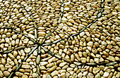 Außen, Boden, Böden, Detail, Details, Farbe, Hintergrund, Hintergründe, Horizontal, Muster, Nahaufnahme, Nahaufnahmen, Oberfläche, Oberflächen, Stein, Steine, Strassenbelag, Strassenbeläge, Tageszeit, Textur, Texturen, F52-163341, agefotostock