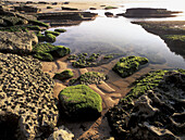 Intertidal seascape. Bay of Biscay. Spain