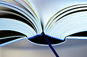 Book, Books, Close up, Close-up, Closeup, Color, Colour, Concept, Concepts, Culture, Detail, Details, Horizontal, Indoor, Indoors, Inside, Interior, Learn, Learning, Object, Objects, One, One item, Open, Page, Pages, Reading, Thing, Things, F58-231332, a