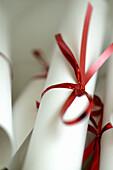 Achievement, Bow, Bows, Celebrate, Celebrating, Celebrations, Christmas, Christmas break, Christmas celebrations, Christmas decorations, Christmas eve, Christmas holiday, Christmas party, Christmas time, Christmas together, Christmas vacation, Close up,