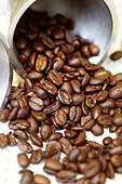 Aliment, Aliments, Close up, Close-up, Closeup, Coffee, Coffee bean, Coffee beans, Color, Colour, Food, Indoor, Indoors, Inside, Interior, Nourishment, Open, Pot, Pots, Still life, Vertical, F58-248971, agefotostock