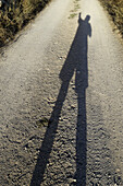 Anonymous, Color, Colour, Contemporary, Daytime, Dirt road, Exterior, Gesture, Gestures, Gesturing, Ground, Grounds, Height, Human, Leisure, Long shadow, Long shadows, One, One person, Outdoor, Outdoors, Outside, People, Person, Persons, Road, Roads, Sha