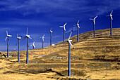 Altamont pass wind power plant, California, USA.