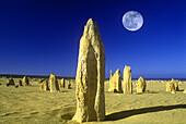 Scenic desert pinnacles, Nambung national park, West australia, Australia.