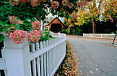 Covered bridge in Woodstock. Vermont. New England. USA