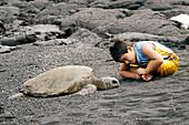 Curious Hawaiian boy observes green sea turtle, Chelonia mydas, Black Sand Beach, Big Island, Hawaii, USA