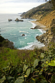 Julia Pfeiffer Burns State Park on the Pacific Coast of California. USA.