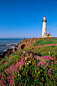 Lighthouse. Pigeon Point. California coast. USA