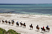 Atlantic Ocean, Indigenous Horse Shelter, horseback riding, beach. Grand Turk. Turks and Caicos.