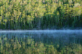 Forest reflected in lake with mist. Adirondack Park. New York State. USA