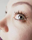 Auge, Augen, Beauty, Blauäugig, Blaue Augen, Blick, Blicke, Detail, Details, Eine Person, Eins, Erwachsene, Erwachsener, Farbe, Frau, Frauen, Frauen (nur), Innen, Konzept, Konzepte, Mensch, Menschen, Nahaufnahme, Nahaufnahmen, Schönheit, Sicht, Sinn, Sin
