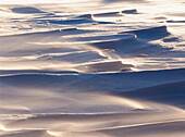 Snow formations. Västerbotten. Sweden