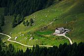 Rifugio Citta di Fiume, Alta Via delle Dolomiti No. 1, Dolomites, Cortina, Venezia, Italy