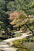 Upper pond garden. Kinkakuji Temple. Reconstructed over the original temple burned in 1950. Added to Unesco s World Heritage List in 1994. Kyoto, Kinki (Kansai) Region. Japan.
