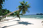 Mahe Island. Seychelles