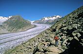 Hiker at the Aletsch Glacier. Alps. Switzerland