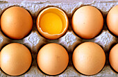 Arrangement, Broken, Close up, Close-up, Closeup, Color, Colour, Concept, Concepts, Difference, Different, Egg, Egg box, Egg boxes, Eggs, Eggshell, Eggshells, Food, Horizontal, Indoor, Indoors, Inside, Interior, Lined up, Lined-up, Many, Nourishment, Nut