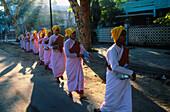 Buddhist nuns (Bhikkuni) going for morning alms. Mandalay. Myanmar (Burma).