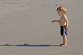 Child (age 2) pointing at dead crab on Sand Dollar Beach, Big Sur Coast, California