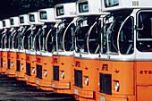 Bus, Buses, Busses, Car park, Car parks, Coach, Coaches, Color, Colour, Contemporary, Daytime, Exterior, Horizontal, Lined up, Lined-up, Lining up, Lining-up, Nobody, Orange, Outdoor, Outdoors, Outside, Parked, Parking, Parking lot, Parking lots, Public