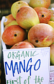 Organic mangos at a farmers market
