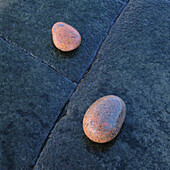 Soft shaped stones at rock, by waters edge. Hovs Hallar, Kattegatt Sea, Skåne, Sweden, Scandinavia, Europe.