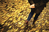 Activity, Adult, Adults, Anonymous, Autumn, Autumnal, Back view, Blurred, Color, Colour, Contemporary, Daytime, Exterior, Fall, Fallen leaves, Ground, Grounds, Human, Male, Man, Medium-shot, Men, Men only, Motion, Movement, Moving, One, One person, Outdo