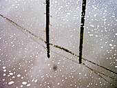 Cold, Coldness, Color, Colour, Exterior, Flake, Flakes, Mirror image, Mirror images, Outdoor, Outdoors, Outside, Reflection, Reflections, Season, Seasons, Snow, Snowflake, Snowflakes, Unpleasant, Weather, Wind, Winter, Wintertime, J08-460069, agefotostoc