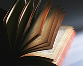 Aged, Book, Books, Close up, Close-up, Closeup, Color, Colour, Concept, Concepts, Half-light, Hobbies, Hobby, Idea, Ideas, Indoor, Indoors, Interior, Leisure, Old, Open, Page, Pages, Paper, Paper sheet, Paper sheets, Reading, Still life, J11-488655, agef