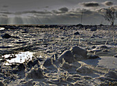 Außen, Eis, Eiskalt, Farbe, Gefroren, Horizont, Horizonte, Kalt, Kälte, Landschaft, Landschaften, Natur, Pflanze, Pflanzen, Schnee, Sonnig, Wasser, Weiß, Winter, J20-475384, agefotostock