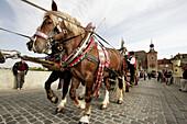 heavy horses drawing a beer coach over the Stone Bridge (Steinerne Brücke), traditional procession, Regensburg / Ratisbone, Upper Palatinate / Oberpfalz, Bavaria, Germany