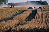 Aktivität, Arbeiten, Arbeitend, Arbeitende, Außen, Cerealien, Ernte, Erntemaschine, Erntemaschinen, Ernten, Farbe, Farm, Feld, Felder, Getreide, Horizontal, Kultivierung, Land, Landbau, Ländlich, Landwirtschaft, Landwirtschaftliches Zubehör, Landwirtscha