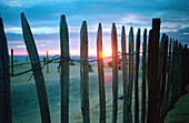 Außen, Detail, Details, Farbe, Geräuschlosigkeit, Hindernis, Hindernisse, Hintergrundbeleuchtung, Holz, Hölzern, Horizontal, Konzept, Konzepte, Küste, Meer, Muster, Niemand, Rücklicht, Ruhe, Ruhig, Sonne, Sonnenlicht, Sonnenuntergang, Sonnenuntergänge, S