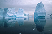 Iceberg in reflection. Andvoord Bay. Antarctic Peninsula. Antartica